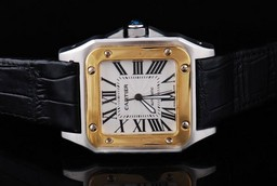 Fake Cool Cartier Santos 100 Automatic Two Tone with White Dial-Brown Strap AAA Watches [W4L6]