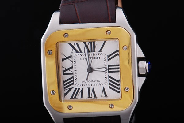 /watches_12/Cartier/Popular-Cartier-Santos-100-Automatic-Two-Tone-1.jpg