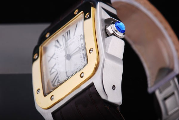 /watches_12/Cartier/Popular-Cartier-Santos-100-Automatic-Two-Tone-3.jpg