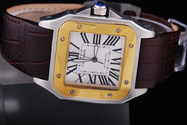 Fake Popular Cartier Santos 100 Automatic Two Tone with White Dial AAA Watches [P5N8]